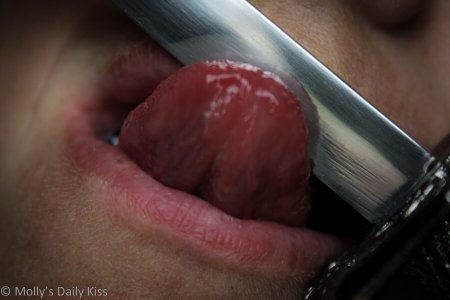 Molly Licking a Knife Image