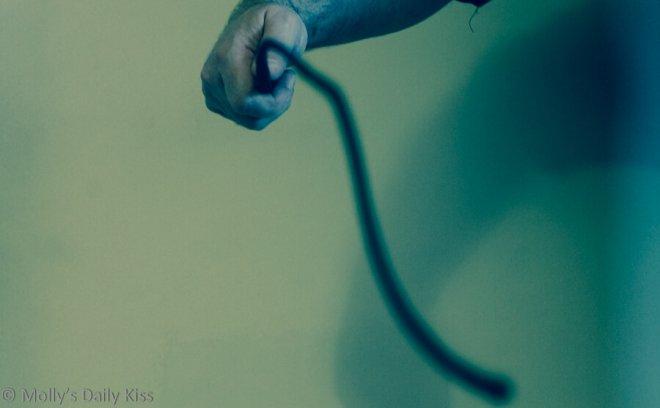 Whip image for Harm