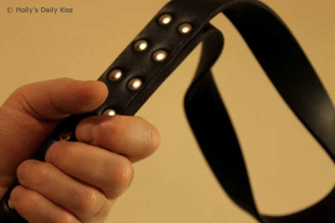 Belt strap for Point of View