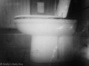 Toilet image for Check Please