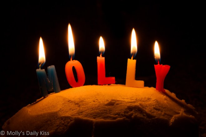Molly birthday candles
