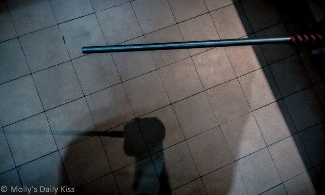 The rod