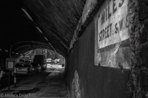 Alley image for Not the RIght Kind of Fear